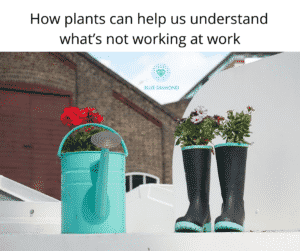 How plants can help us understand what's not working at work