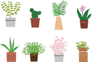 How plants help us see what's not working at work